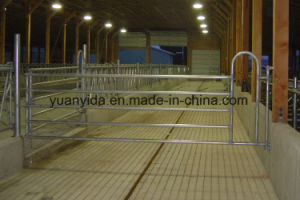High Quality Hot Galvanized Cattle Yard Panel pictures & photos