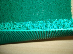 Double Color Diamond Backing PVC Coil Mat pictures & photos