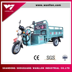 Economic Electric Cargo Trike/ Three Wheel Tricycle in City pictures & photos