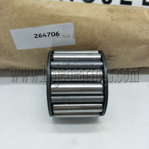Needle Roller Bearing 264706 E for Russia Market pictures & photos