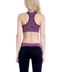 Wholesale Plain Breathable Good Quality Bodybuilding Women′s Yoga Pants pictures & photos