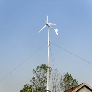 1kw Small Wind Turbine Generator for Home Use pictures & photos