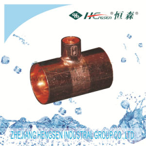 Company Introduction: Zhejiang Hengsen Industrial Group Co., Ltd Is a Specialized Manufacture Base for Refrigeration Fittings, HVAC Controls Products, Auto Air- pictures & photos