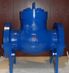 "High Temperature Swing 6"" Class900 540deg. Check Valve pictures & photos"