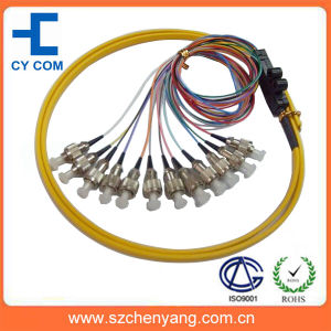 FC/SC/ST 12 Core Ribbon Packing Fiber Optic Pigtail