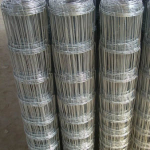 Hot-DIP Galvanized High Tensile Cattle Fence pictures & photos