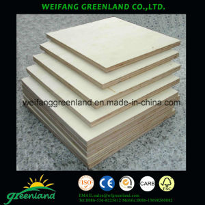 Raidata Pine Film Plywood for High Grade Furniture Produce pictures & photos