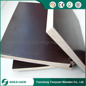 18mm Black Film Faced Plywood/ Phenolic Board pictures & photos