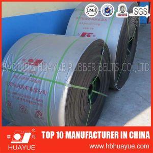 Corrosive Materials Acid Alkali Resistant Abrision Rubber Belt pictures & photos