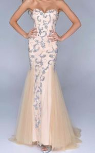 Formal Discount Evening Dresses (ED14010) pictures & photos