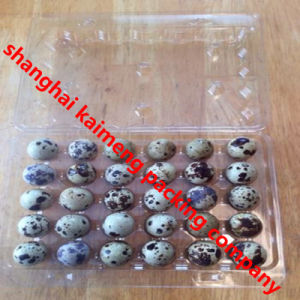 Clear PVC Plastic Quail Egg Cartons Recyclable