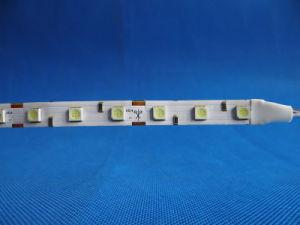 High Brightness 12V 60LED 0.2W/LED 5050SMD LED Strip for Advertising pictures & photos