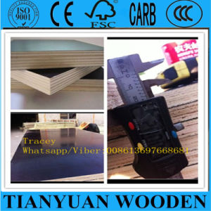 Hot Sell Fire Proof HPL Formica Plywood pictures & photos