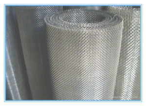 Factory Direct Sales Stainless Steel Filter Mesh pictures & photos