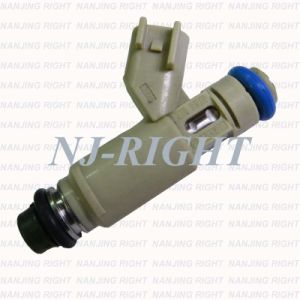 Denso Fuel Injector 2X43-CA for Jaguar X-Type pictures & photos