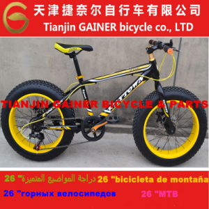 "Tianjin Gainer 20"" Snow Bicycle/ MTB Design pictures & photos"