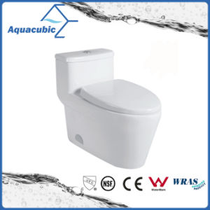One Piece Siphonic Dual Flush Toilet in White (ACT9329) pictures & photos