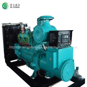 80kw LPG Power Generator Sets (Liquefied Petroleum Gas) pictures & photos