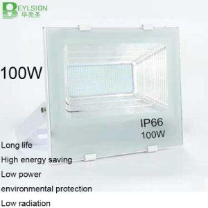 100W AC85V-265V Cornucopia White Color LED Floodlight pictures & photos