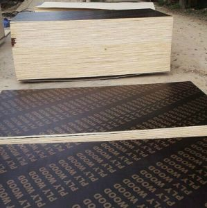 Big Size Film Faced Plywood with Poplar Core pictures & photos