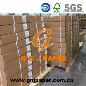 Virgin Mix Pulp Translucent Butter Paper with Strong Carton Packing pictures & photos