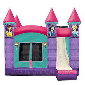Inflatable Castle, Inflatable Combo Slide (B3004) pictures & photos