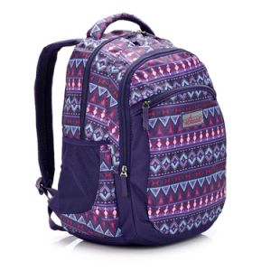 Fashion Teenager Women Business Trip Travel Laptop Backpack pictures & photos