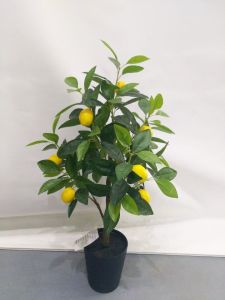 Artificial Decoration Plants of Apple Tree Gu-SL-327-840-8 pictures & photos