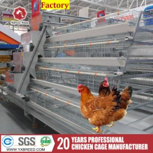 Chicken Wire Mesh Farming Machinery Chicken Layers Poultry Farms pictures & photos