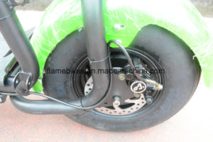 Popular Electric Moped with 1000W Brushless Motor pictures & photos