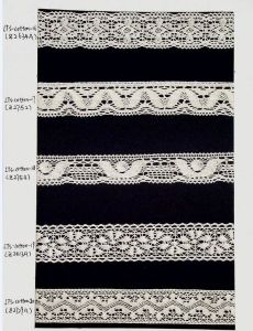 High Quality Fancy Elastic Lace pictures & photos