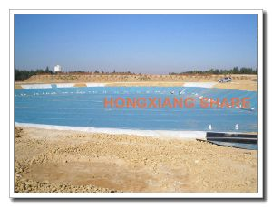 HDPE Geomembrane Price pictures & photos
