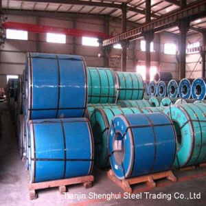 Expert Manufacturer Stainless Steel Coil (DIN 410s Grade) pictures & photos