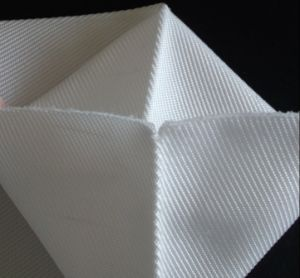 Polyester Woven Filter Bag pictures & photos