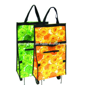 Folding Shopping Trolley Bag (XY-415B) pictures & photos