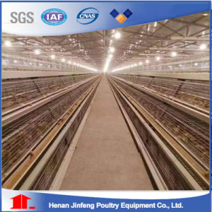 Layer Cages for Pakistan Poultry Farm Chicken Raising pictures & photos