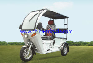Handicapped Tricycle/Handicapped Scooter/Disabled Scooter (DTR-12B) pictures & photos