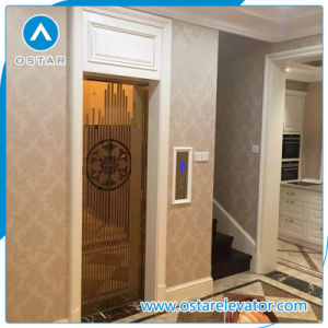 Home Used Mini Villa Elevator with Latest Lift Controlling System pictures & photos