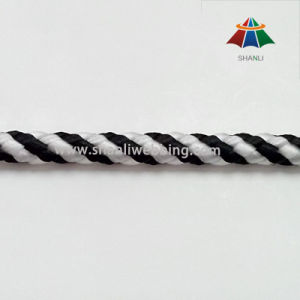 Best Price Plastic Cord/ Rope for Garments pictures & photos