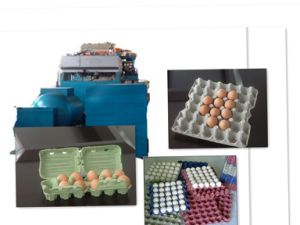 Mini Egg Tray Machine /500-700PCS/H
