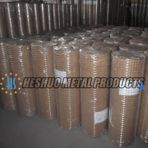 1/4 Inch Factory Price Galvanized Welded Wire Mesh Roll pictures & photos