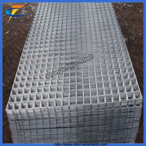 China High Quality 2X2 Galvanized Welded Wire Mesh Panel - China ...