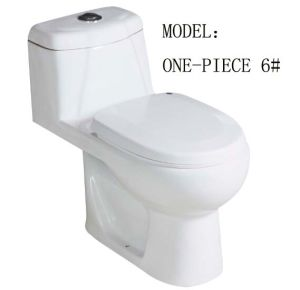Hot Sanitary Ware Single Piece Toilet pictures & photos