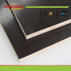 Black Brown Film Marine Plex Plywood