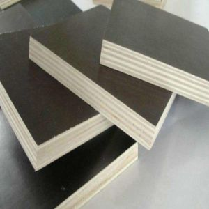 Construction Using Film Faced Plywood pictures & photos