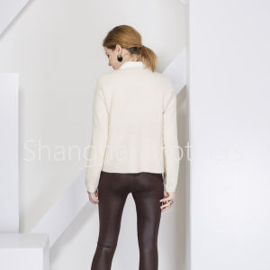 Ladies Fashion Cashmere Sweater 16braw314 pictures & photos