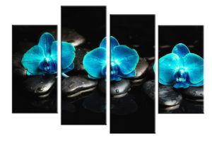 Three Flowers and Rocks Canvas Art