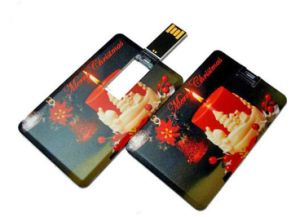 Profotional Gifts Business Card USB Flash Drive, Credit Card USB, Credit Card USB Flash Drive pictures & photos