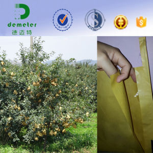 Anti-Insect Waterproof Waxed Kraft Paper Fruit Protection Growing Bag for Pear Mango pictures & photos