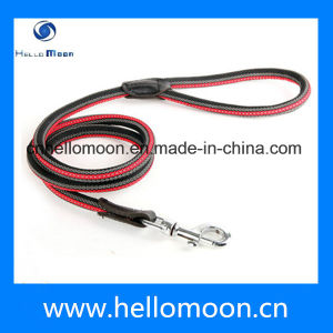 Hot Selling New 2015 Wholesale Cheap Dog Slip Leash